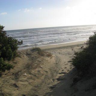 dune-sabaudia-27-500x375 (1)