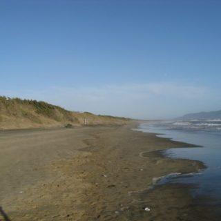 dune-sabaudia-5-500x375
