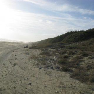 dune-sabaudia-7-500x375