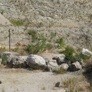 Cava-di-Valvisciolo-11-500x375