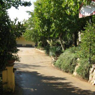 Cisterna-Agrit.-Green-Line3-500x375