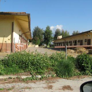 Cisterna-Agrit.-Green-Line7-500x375