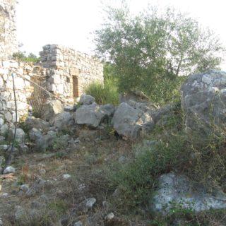 Abitazione abbandonata ventosa-SS Cosma (5)