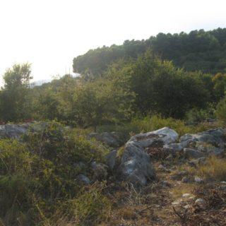 Abitazione abbandonata ventosa-SS Cosma (6)