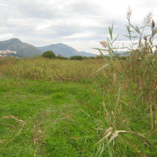 Monte San Biagio (8)