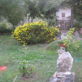 Santuario località RAINO - Itri (9)
