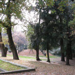Sezze giardino 1