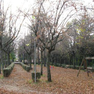 Sezze giardino 2
