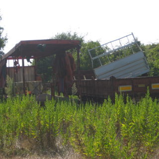 Casa abbandonata-Formia (3)
