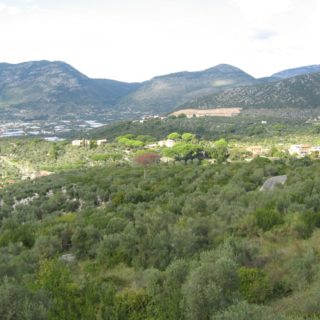 terracina-vista-5