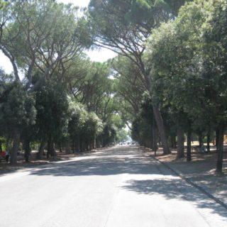 giardini-comunali-latina-5