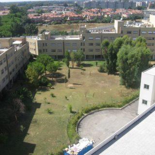 giardino-ex-universita-latina