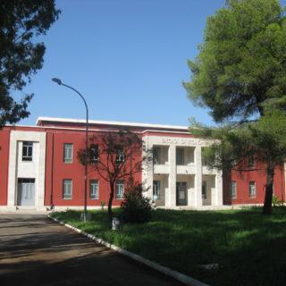 universita-economia-4