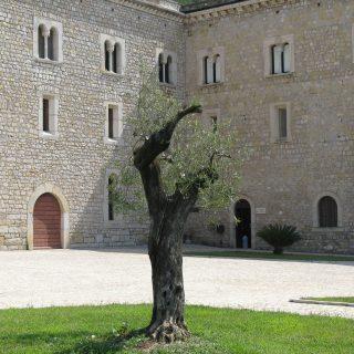 Interni Abbazia di Valvisciolo (5)